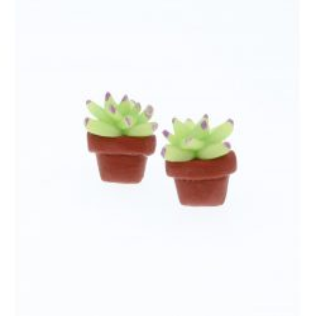 Kaktus sukulenty 1,3cm kaktusy kolczyki sztyfty